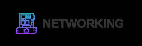 NETWORKING IT
